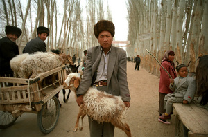 Man on the Hotan Road